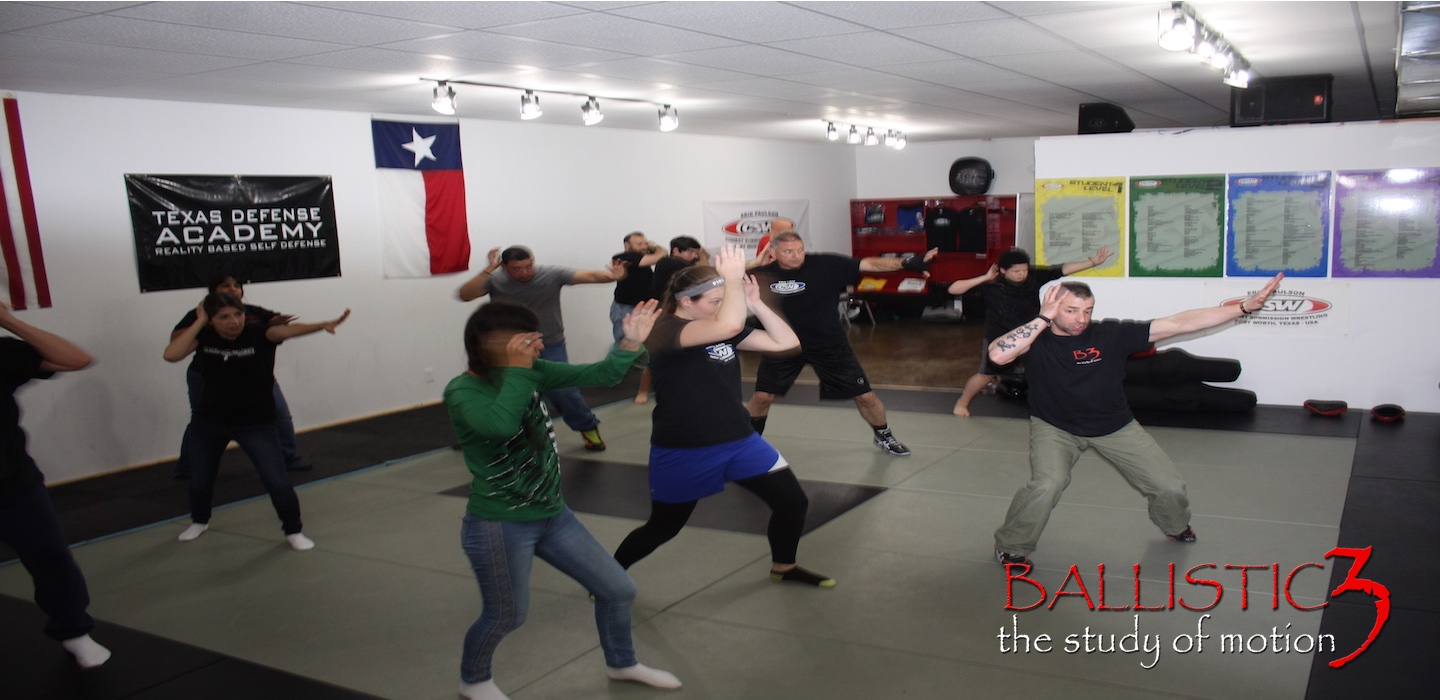 Martial Arts & Self Defense